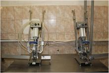 2007 Pneumatic clipping machine