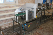 2004 Slicer for automatic fish
