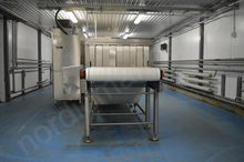 Tunnel microwave defroster SAIR
