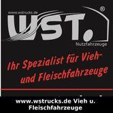 """2017 DAF LE 250 """"New"""" WST Editi"""