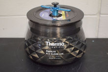 Thermo Scientific F12-6x500LEX