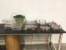 Lot of Bio-Rad Electrophoresis
