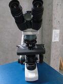 Motic BA300