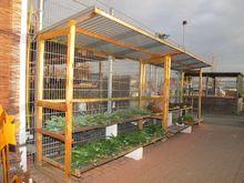 Sale shelter for plants # 63429