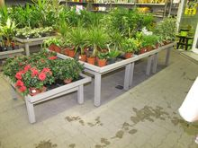 Plants tables wood # 63563