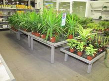Plants tables wood # 63564
