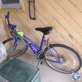 Magna bike, Coleman cooler & wi