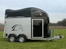 Cheval Libert� Gold 2