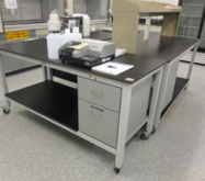 "Laboratory tables 30"" x 6' 2-Dr"
