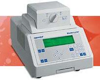 Eppendorf Mastercycler  PCR