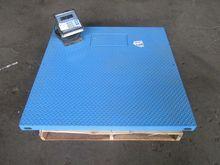 DSL4848-05 4' x Weigh-Tronix Fl