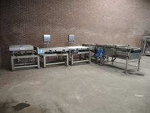 TMF Belting Systems Sorting and