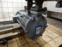 Witt Pumps