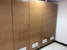 5ea Vented chemical storage cab