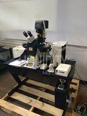 Leica TCS SP5 Confocal Laser Sc