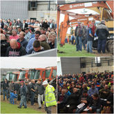 Machinery Auction Specialists