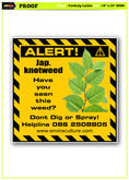 japanese knotweed  control serv
