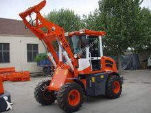 2014 Dragon Machinery ZL12F