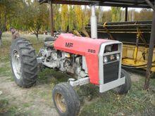 1981 Massey Ferguson 285 Farm T