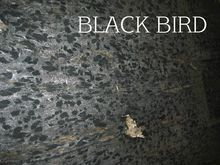GRANITE / MARBLE SIZES Shop Acc