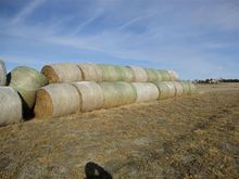 2016 3rd Cutting Alfalfa Round