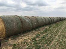 2016 Alfalfa Round Bales