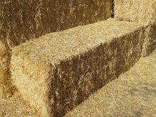 2016 Wheat Straw
