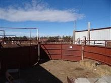 Livestock Systems Tub & Alley