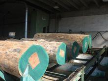 Primultini 1600 Exotic sawmill