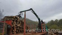 2000 Roman Short Log Truck Roma