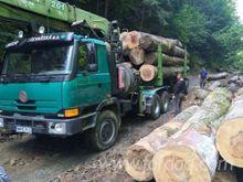 2000 Tatra Longlog Truck Romani