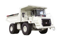 Used Terex TR100 in