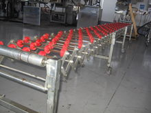 Expanding Conveyor With PLASTIC