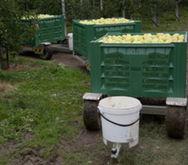 2016 Samatec Obst-Erntewagenzug