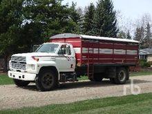 1989 FORD 800 S/A Grain Truck