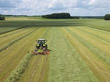 Claas Liner 420 Rotary swather
