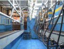 Milkline Swingover milking parl