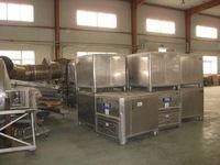 1996 Gagea - Milk Powder Produc