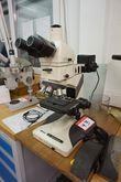 Nikon Microscope 2593 93