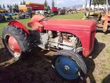 1954 FERGUSON TEA20 Tractors