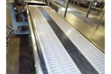 Case Turner Feed Conveyor - 129